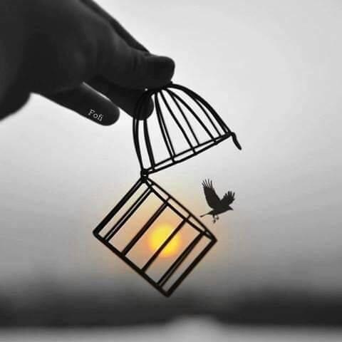 agitar las alas